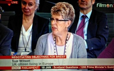 Bremain's Sue Wilson appears at Select Committee for Exiting the European Union