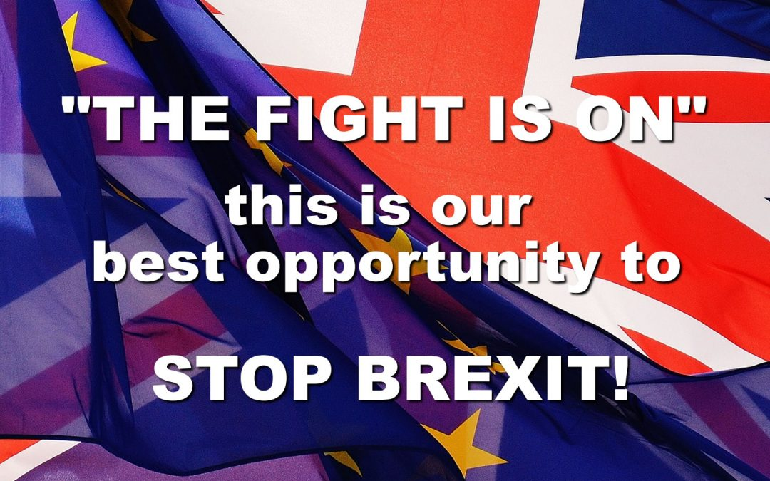 Best Opportunity to Stop Brexit