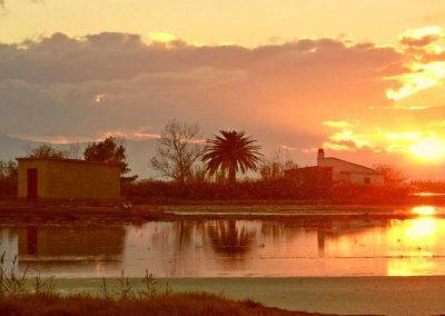 Kalba Meadows - Ebro Delta