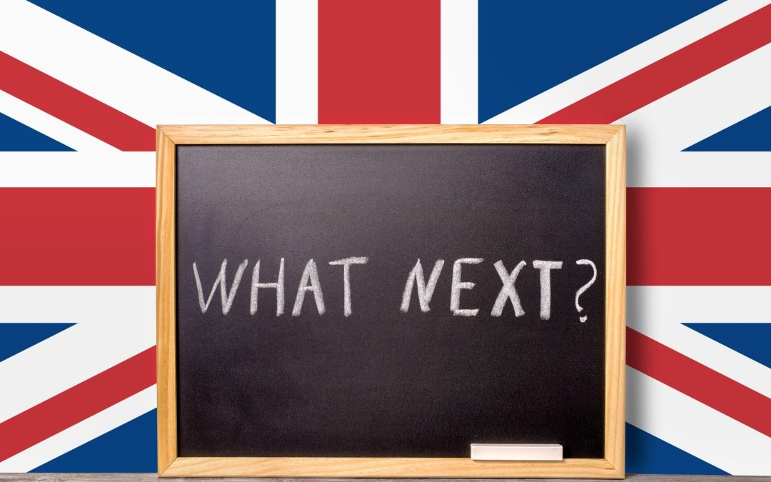 Image result for Notes from a Brexpat: The Brexit Vote and What Comes Next