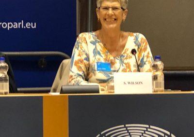 Sue on panel at European Parliament
