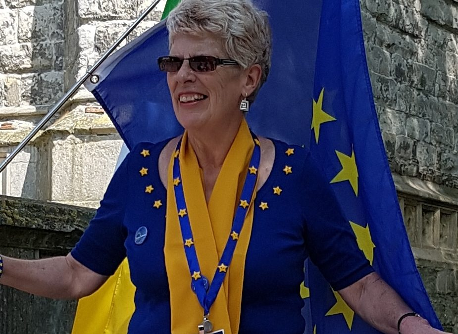 Sue Wilson talks Brexit on Europeans In!