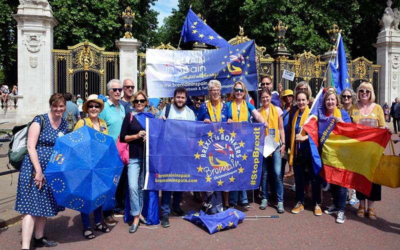 Expat pro-EU remain group considering appeal against High Court Brexit referendum case dismissal